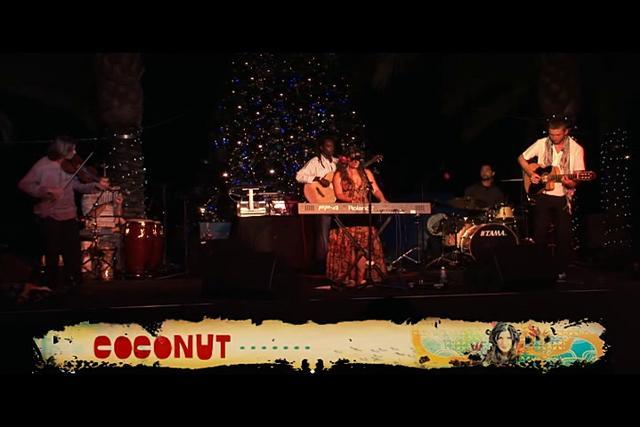 Coconut Live