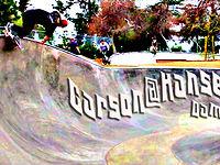 Carson Gnarson at the Hansen dam bowl cradle (jan 22)