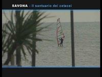 [SeaLand Videopedia] Ligurian Sea Cetacean Sanctuary