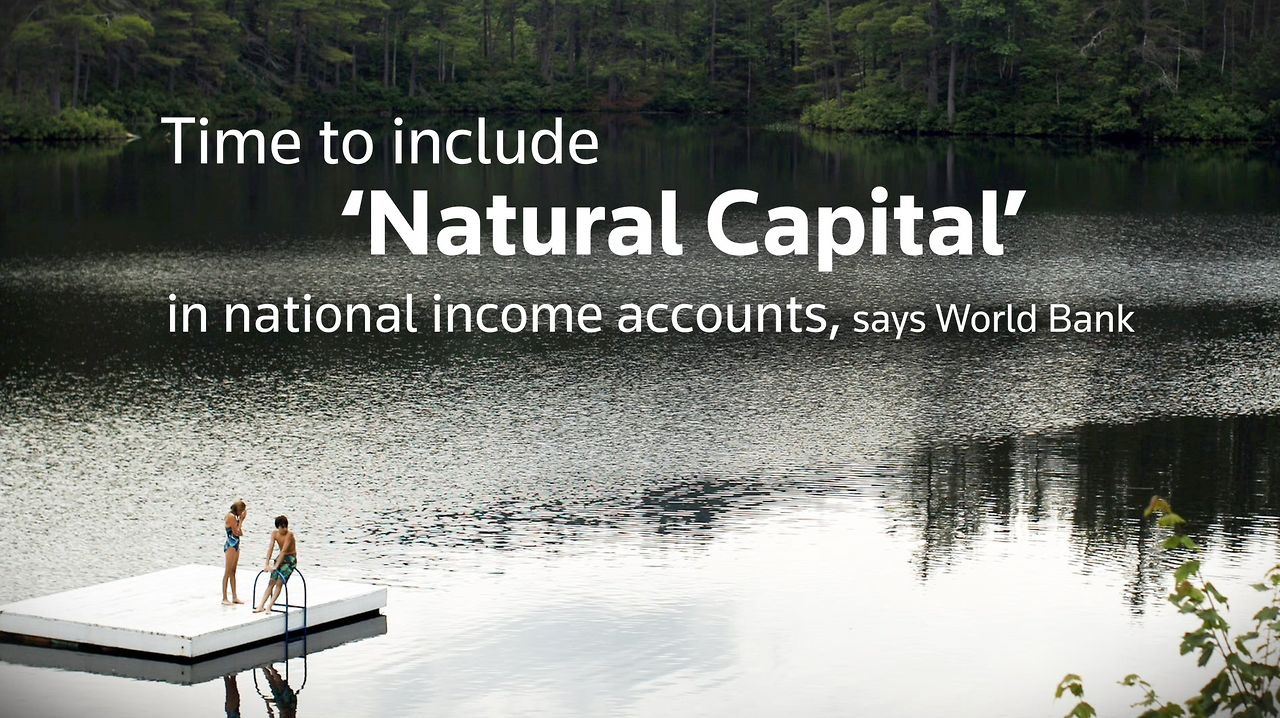 Natural Capital Accounting ��� English version