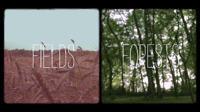 FIELDS and FORESTS EPK - Rebecca Roubion