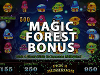 Wild Pixies - Magic Forest Bonus