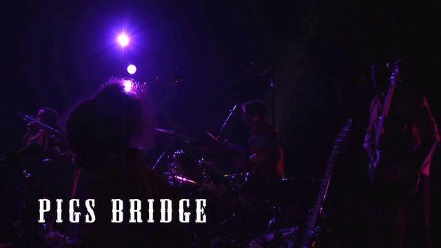 ANTIQUARKS-BAL_INTERTERRESTRE-SpectacleGrandAngleVoiron2012-PIGS_BRIDGE-2012.mov