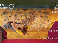 [Ned Feehally - Steep Board Training - Part 2]