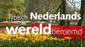 Corporate Keukenhof YouTube HD
