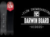 Flow Darwin Snowboard 2014