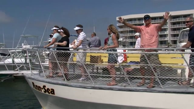 Cruise Orange Beach Dolphin Tours