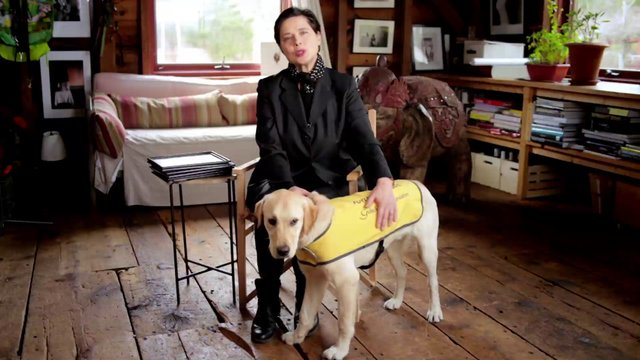 Isabella Rossellini For The Guide Dog Foundation